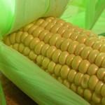 Fresh Corn Vinaigrette