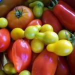 Fresh Tomato–Butter Sauce