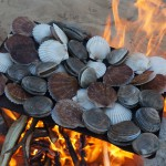 A Cheap, Fast Wood Fire Grill
