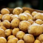 Hanukkah or Winter Weekends: Genius Potato Pancake Idea!