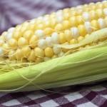 Faith's Fresh Corn with Bacon, Shrimp, Avocado, and Lime