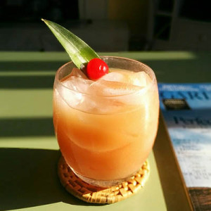 pain killer cocktail photo by: Justin Van Dyke/flickr, creative commons
