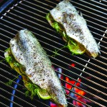 Best Ever Easy Grilled Trout