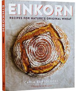 Einkorn_sized