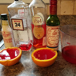 Anthony's Don Corleone Negroni_recipe