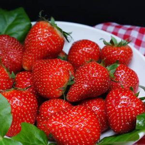 strawberries_Pixabay_post
