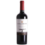 Holiday Wine: Another Great Bargain Cabernet Sauvignon at $10