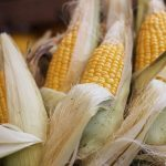 how to shuck corn on the cob