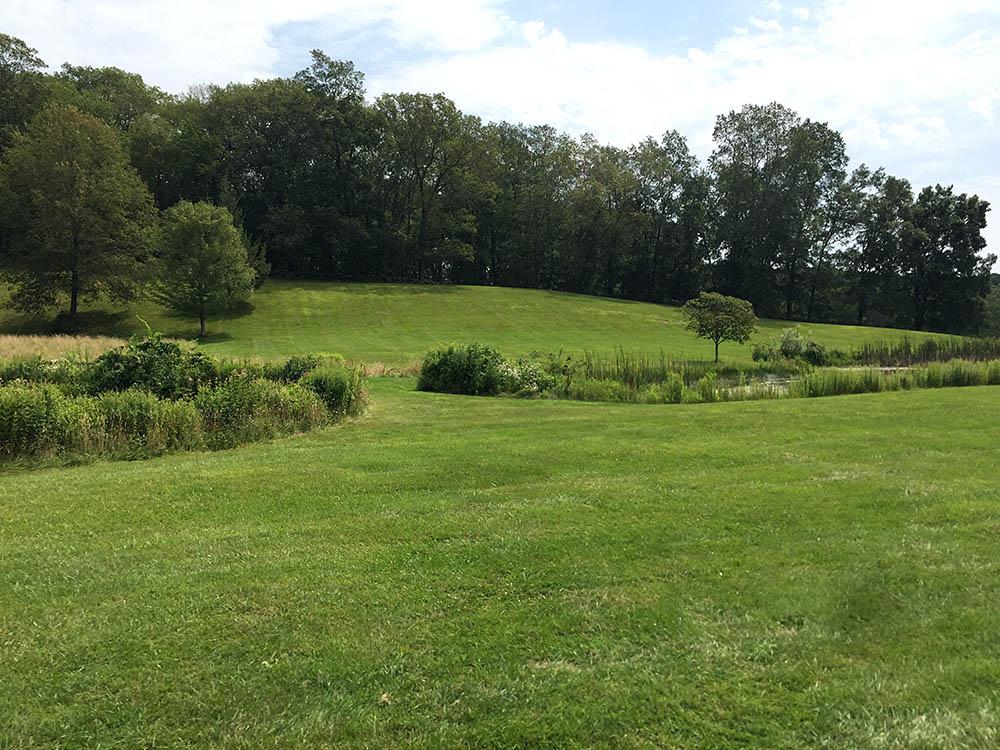 White Gate Farm