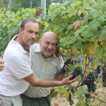 What's it Like to Start a Vineyard in Italy?